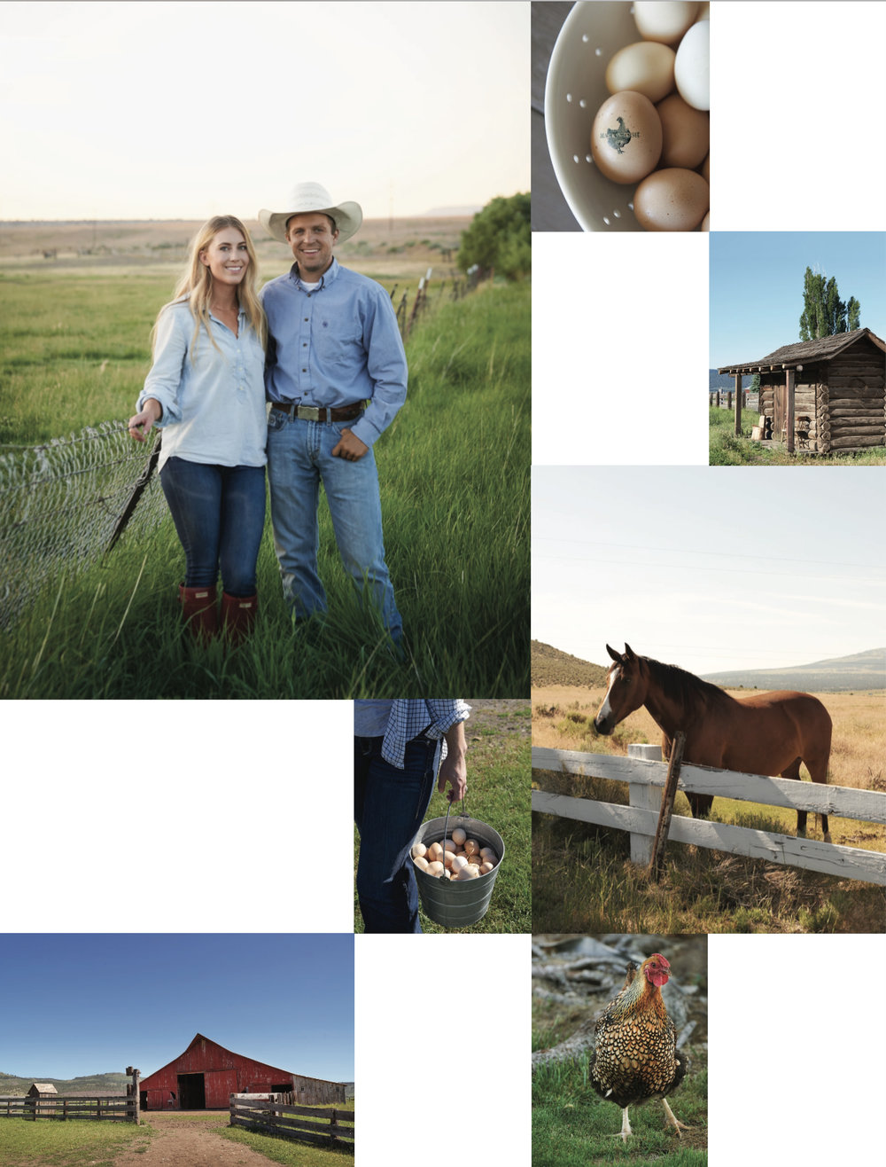 Life+on+the+farm+ +boxwoodavenue.com copy.jpg