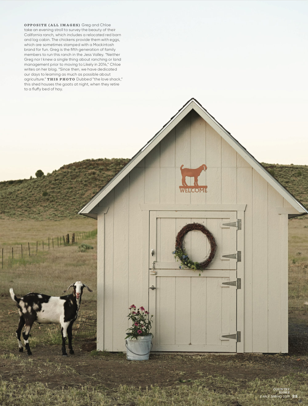 White+goat+barn+with+nubian+goat+|+storage+shed+barn+ideas+|+#farmhousestyle+#goats copy.jpg