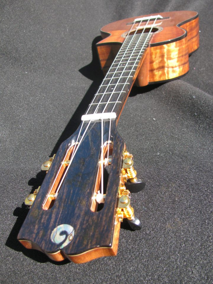 Ebony head with Abalone Oceana Inlay