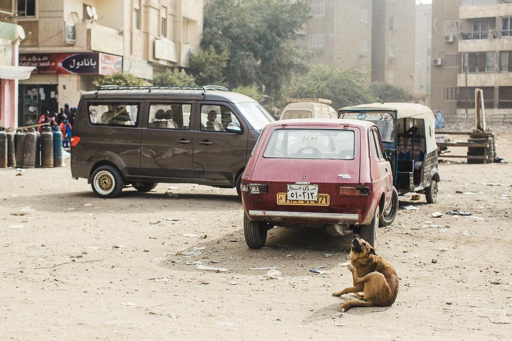 Egypt_0012.jpg