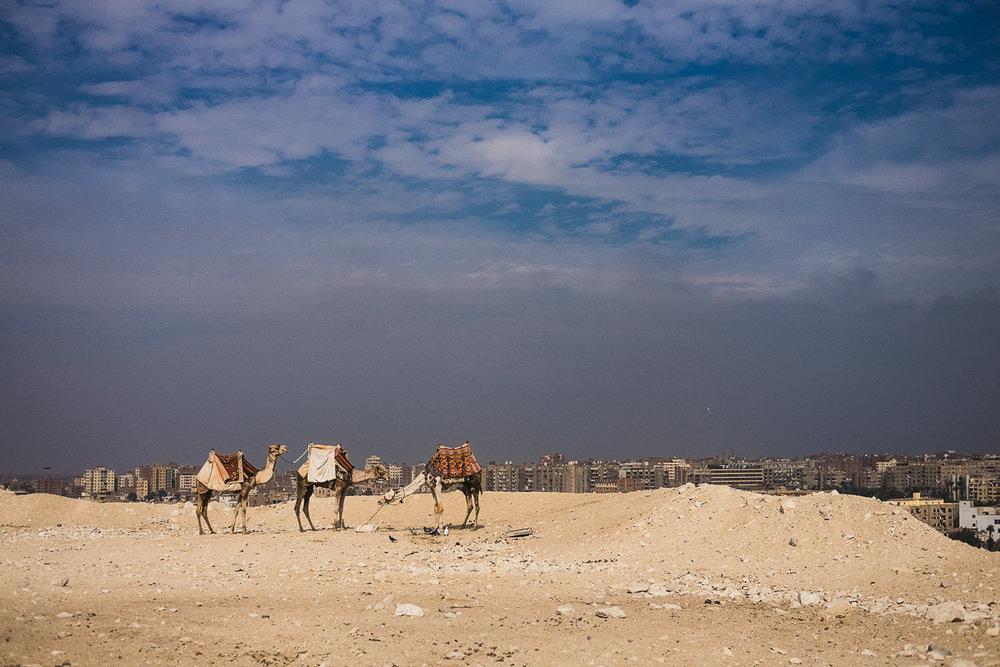 Egypt_0036.jpg