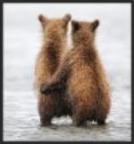 bear hug.jpeg