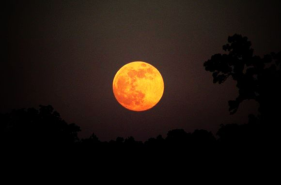 The sweet, divine, Honey Moon Friday 13th June