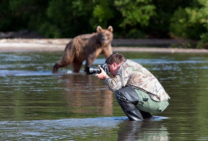 animals and photographers