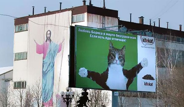Jesus and cute cat