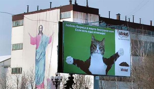 Jesus and cute cat