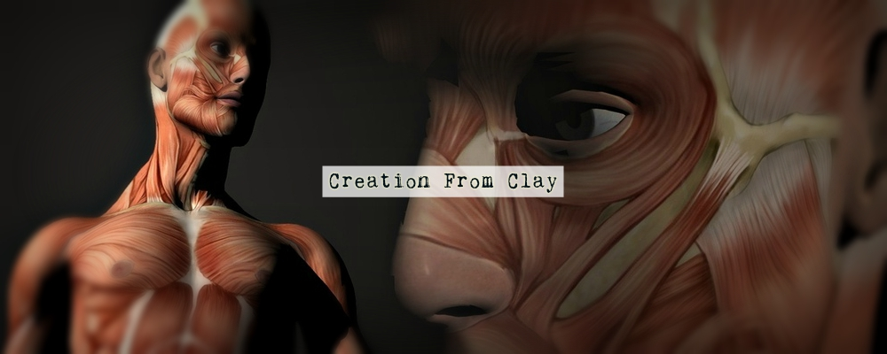 Creation From Clay