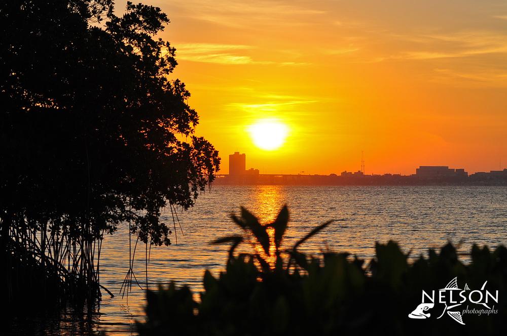FM Sunrise 2.jpg