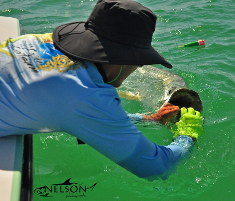 Mitch Porter puttin' the death grip on a beautiful SWFL Tarpon