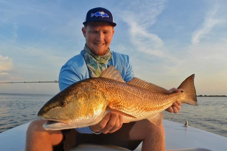 Beautiful Mosquito Lagoon Redfish Caught Sight Fishing in Shallow Waterz!
