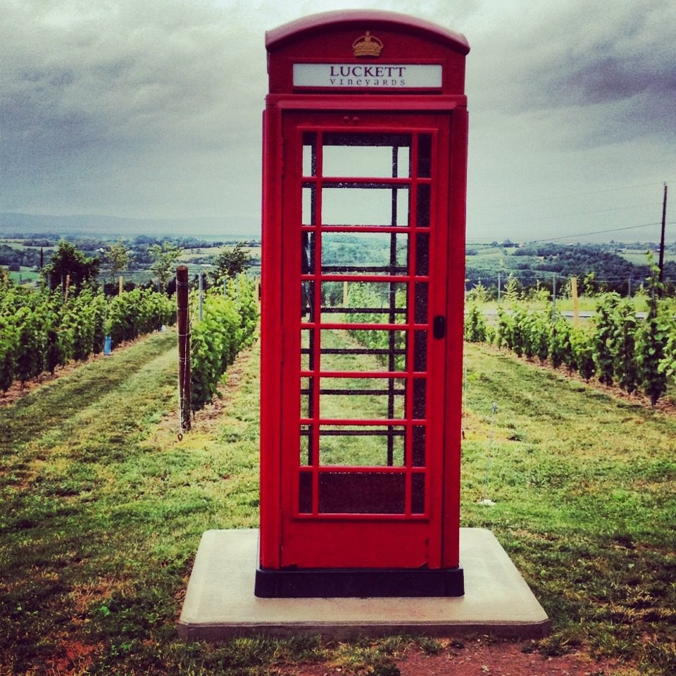 Luckett Vineyard - photo by  www.instagram.com/ActonSue