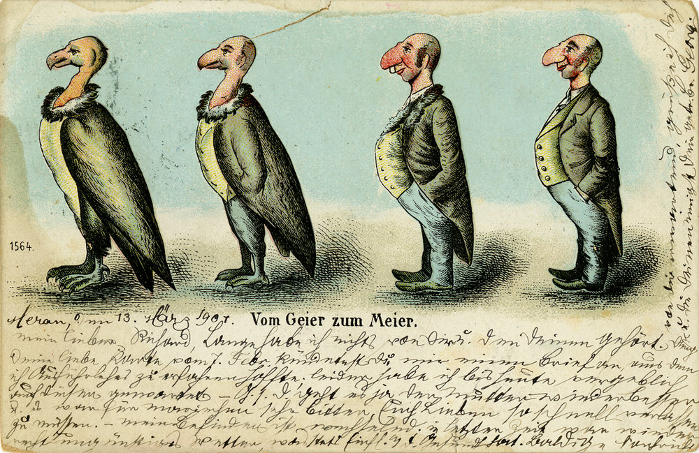 "Anti-semitic postcard titled ""Vom Geier Zum Meier"" [From vulture to Meyer]. 1901"
