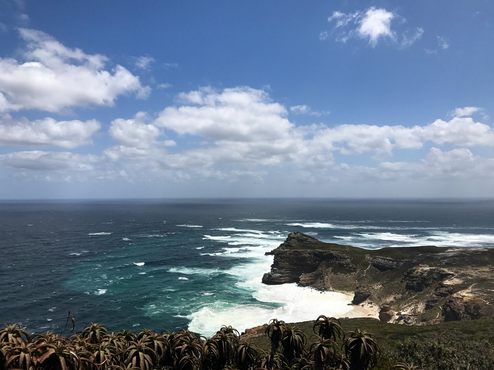 Capepoint (1 of 4).jpg