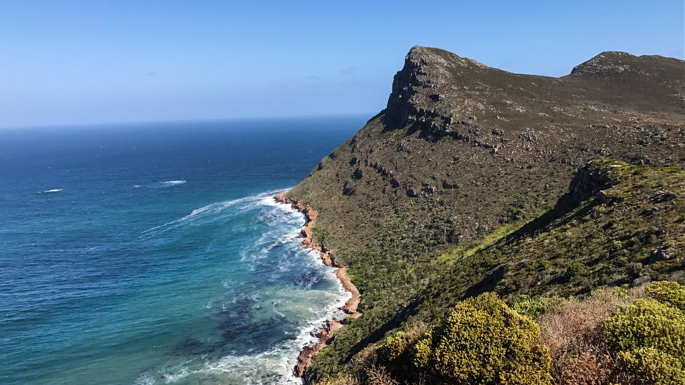 Capepoint (4 of 4).jpg