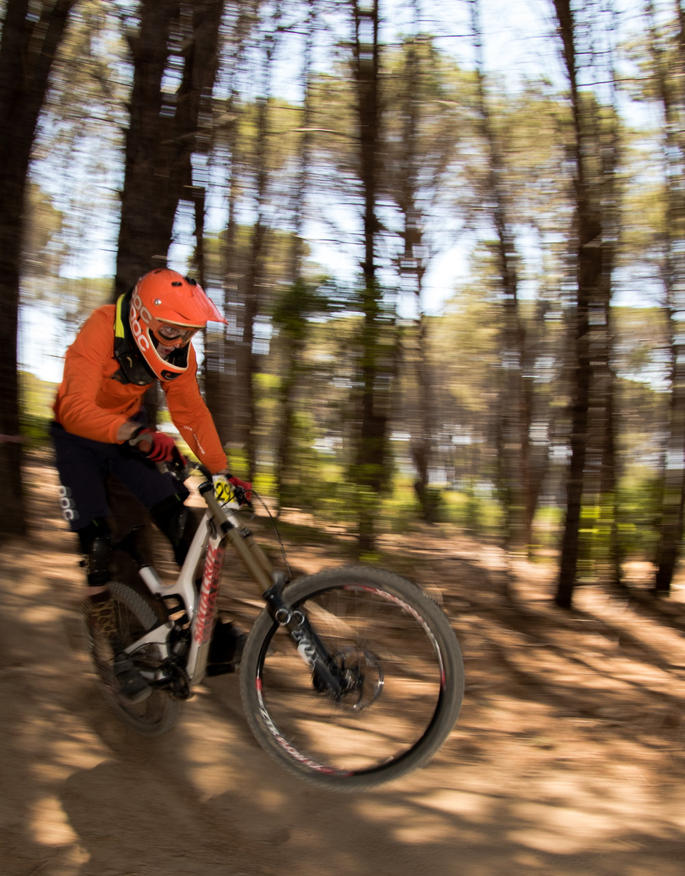 WP DOWNHILL PAARL (2 of 2).jpg