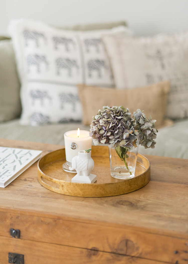 Family Room Project | Cute Gold Pottery Barn tray