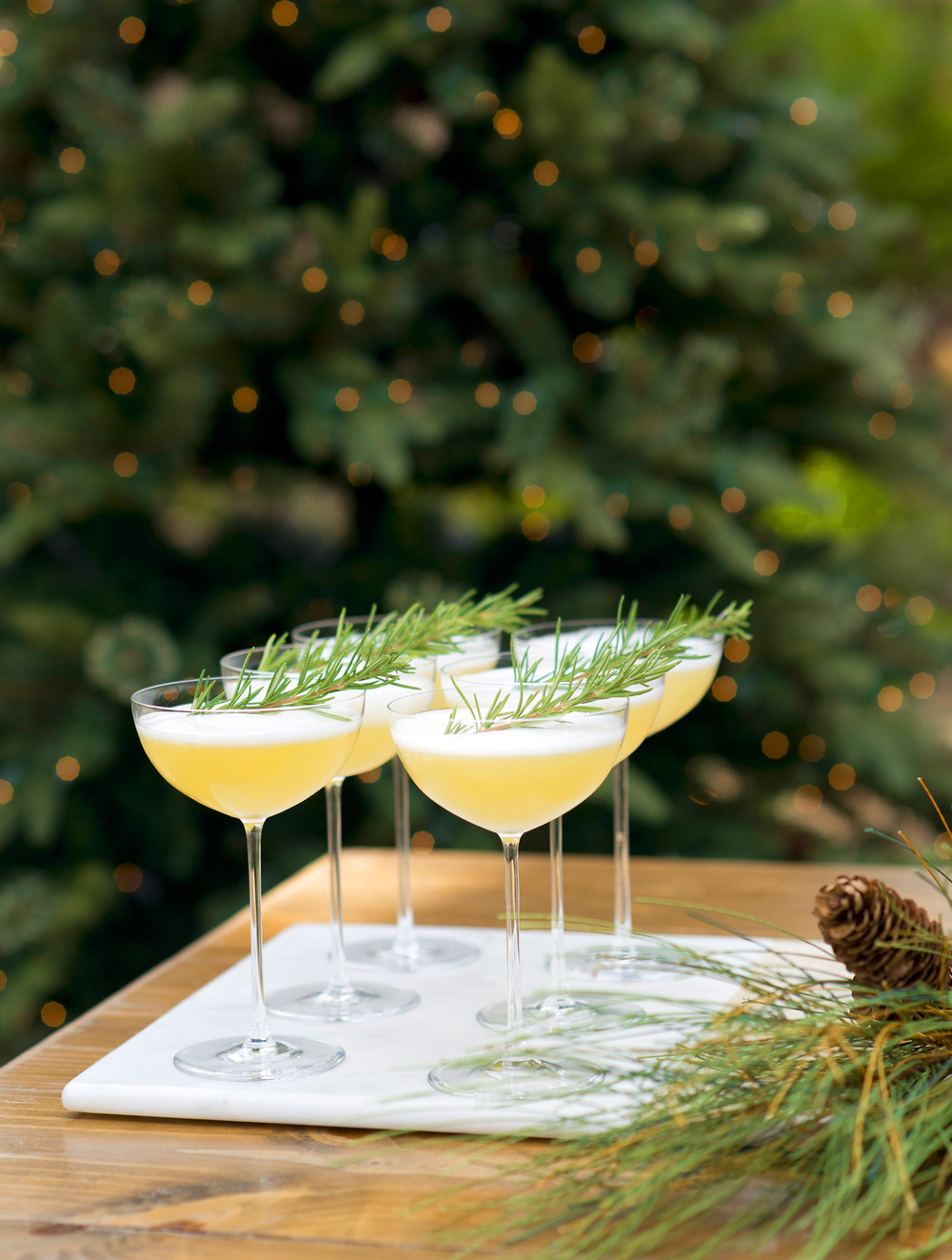 Christmas Lady Cocktail Recipe served in Crate & Barrel's Coupe Glass