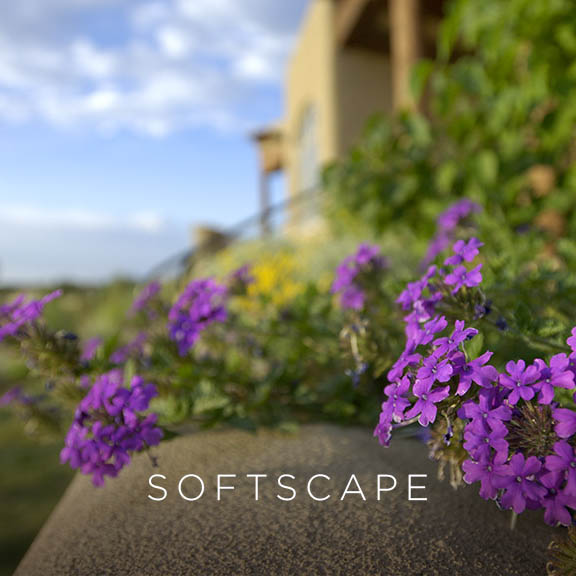 Softscape Portfolio
