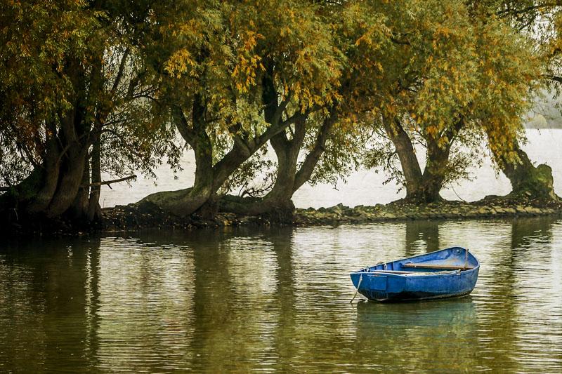 Blue Boat #3
