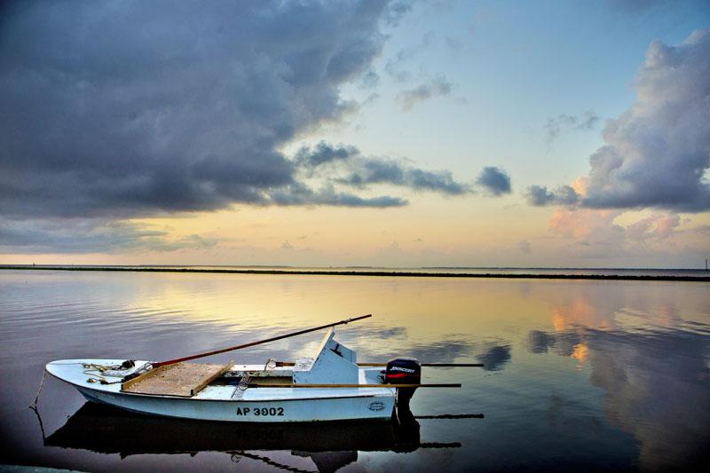 Apalachicola Bay #1