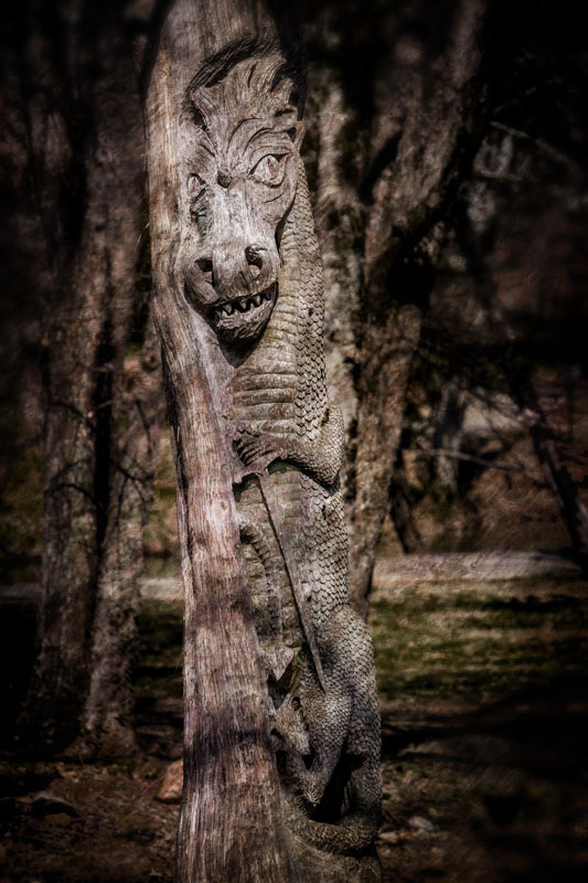 Carved Tree #3