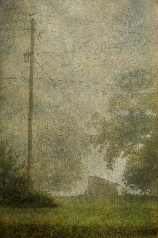 Telephone Pole in Fog