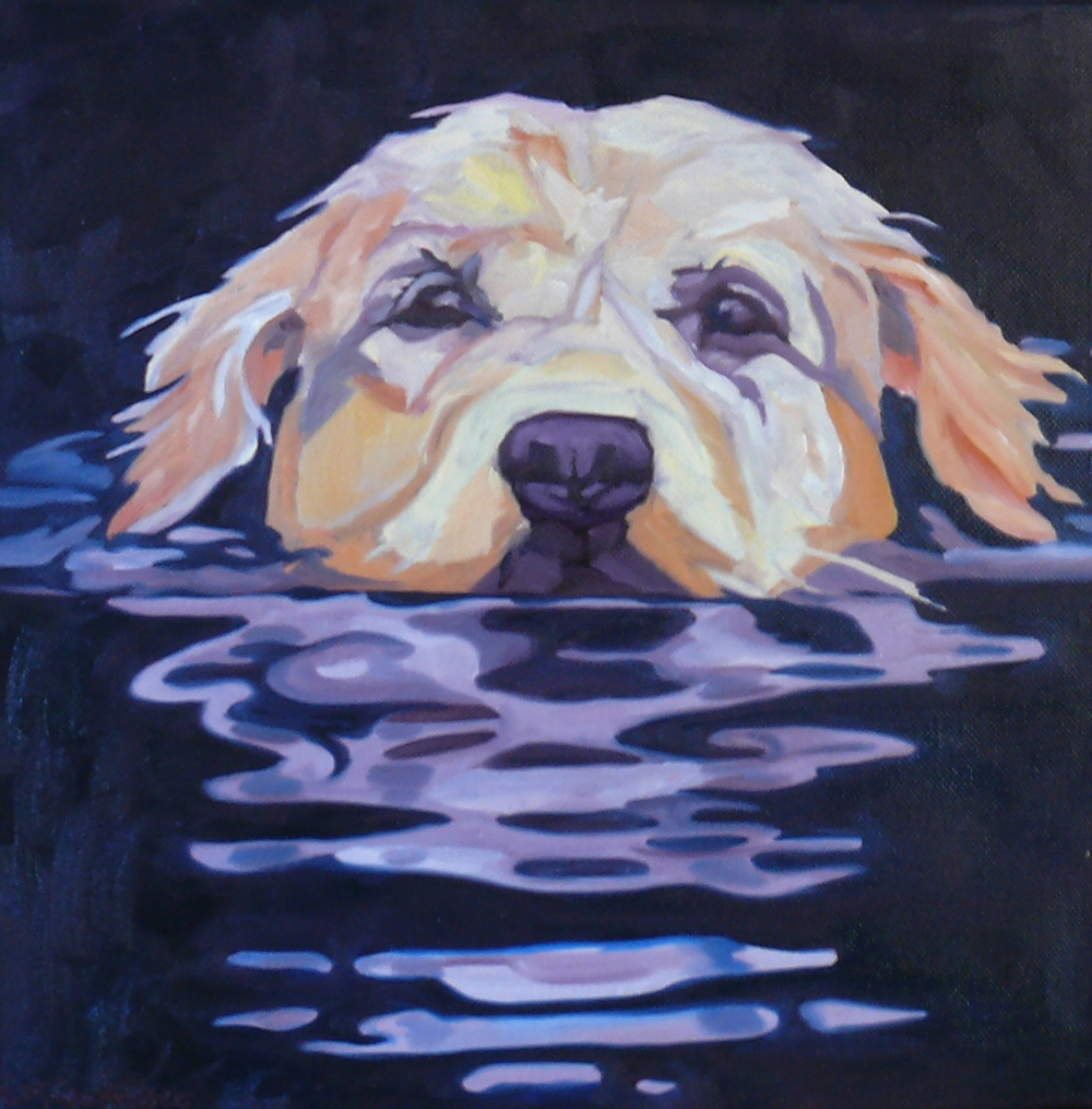Swimming Golden