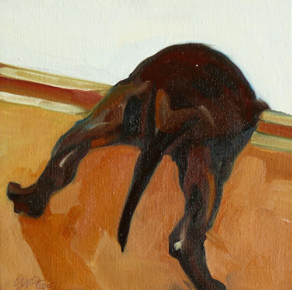 Ninja Puppy Butt