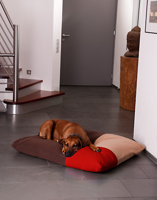Mondrian Dog Cushion