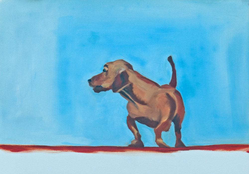 Doxie Red White and Blue.jpg