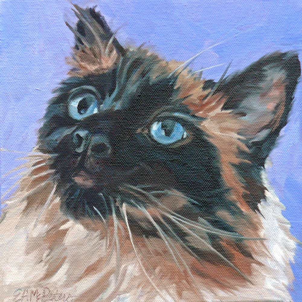 Sandy the Cat 1500 Evelyn McCorristin Peters.jpg