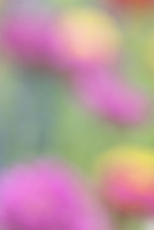 060800_DSC0075-01abstract4.jpg