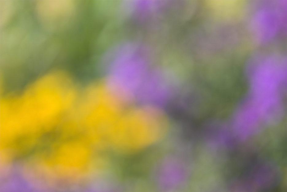 070923_DSC0016-abstract.jpg