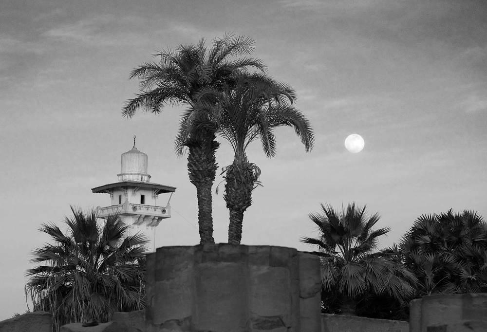 090100_DSC3037-Full-Moon-Over-Luxor-Temple.jpg