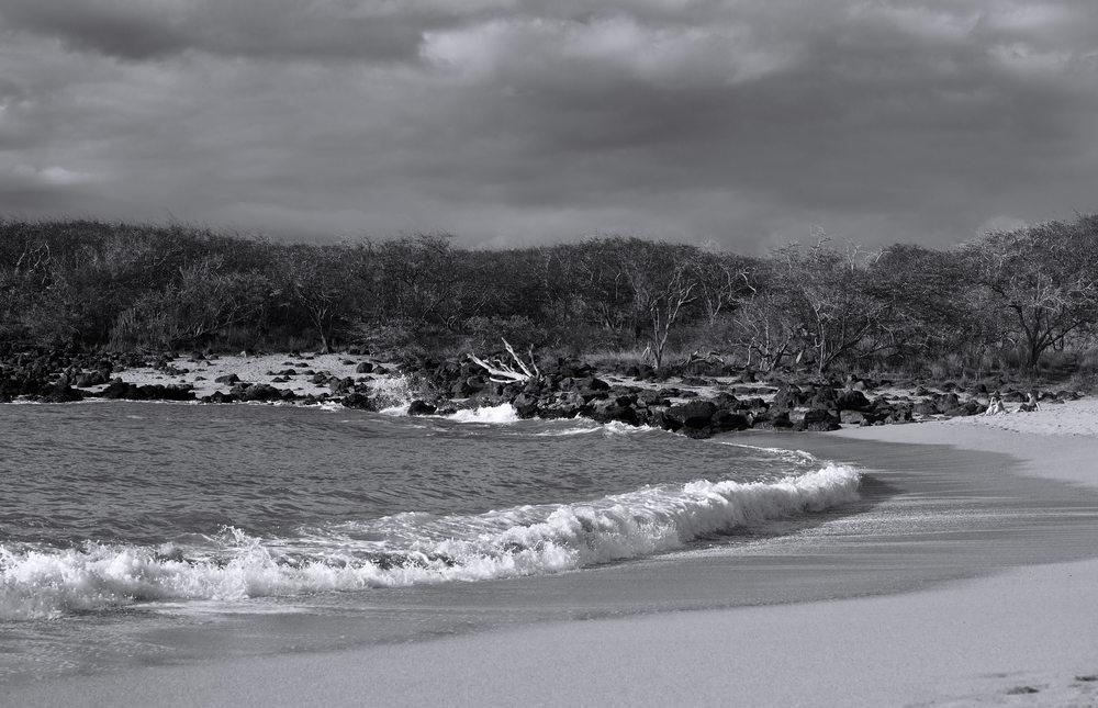 130117-Molokai---Dixie-Maru-Beach_0541.jpg