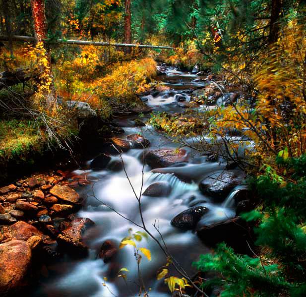 030918 Fall on Chalk Creek copy.jpg