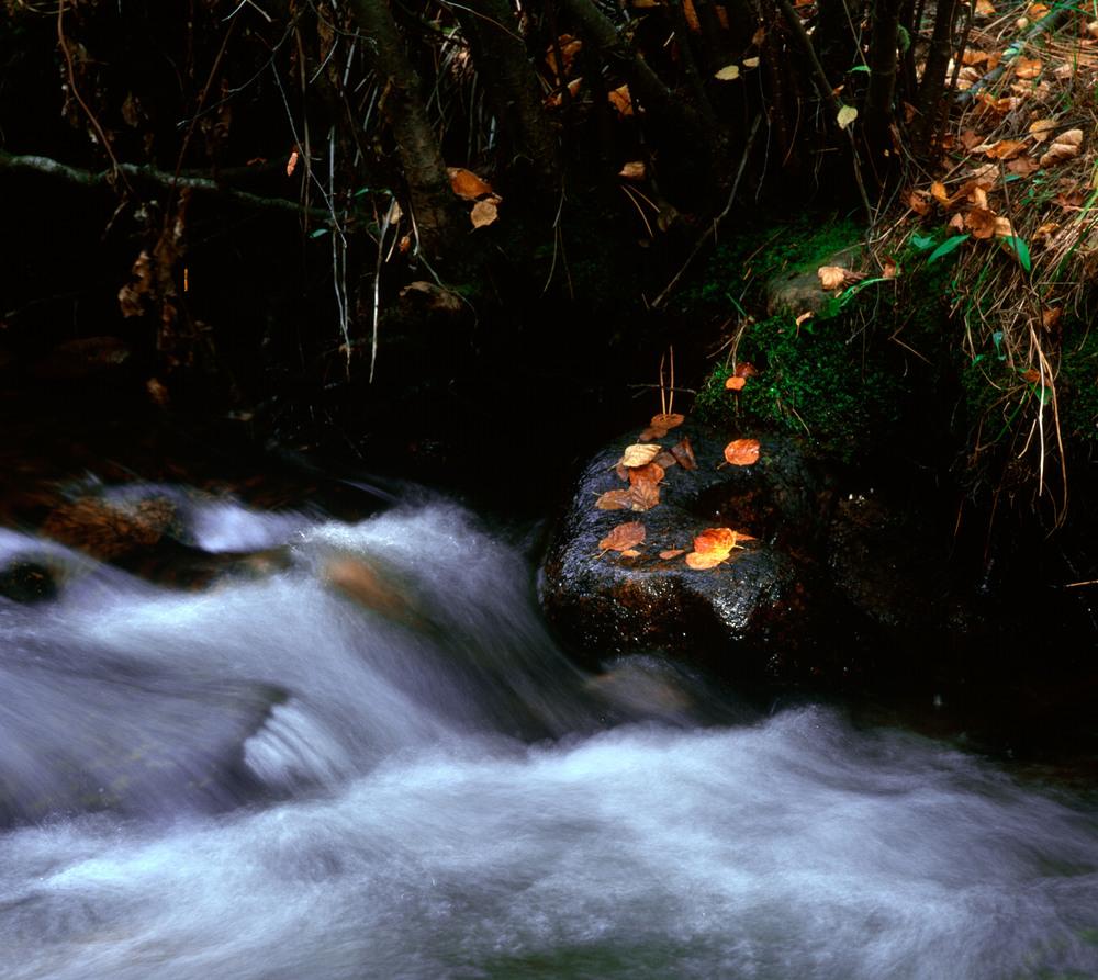 040906 Fall on Lost Creek.jpg