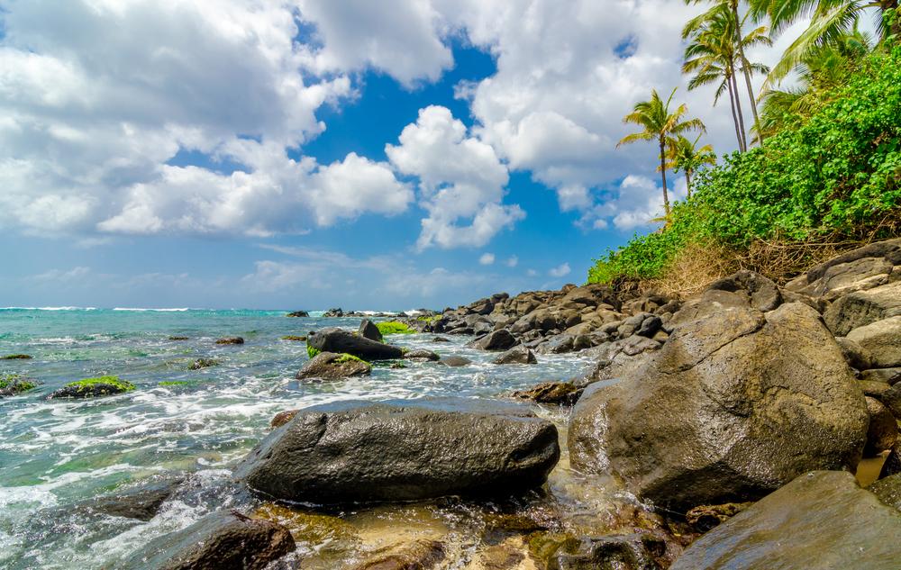 Hawaii 2 (197).jpg