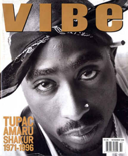 vibe cover chip.jpg