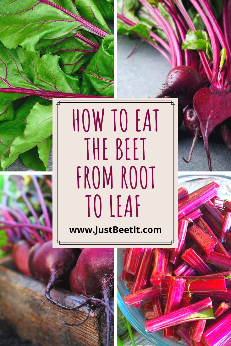 how to eat the beet from root to leaf.jpg