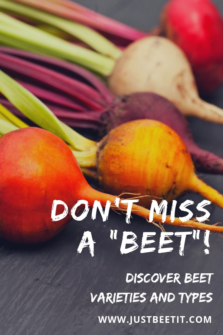 do not miss a beet - learn beet varieties and types.jpg