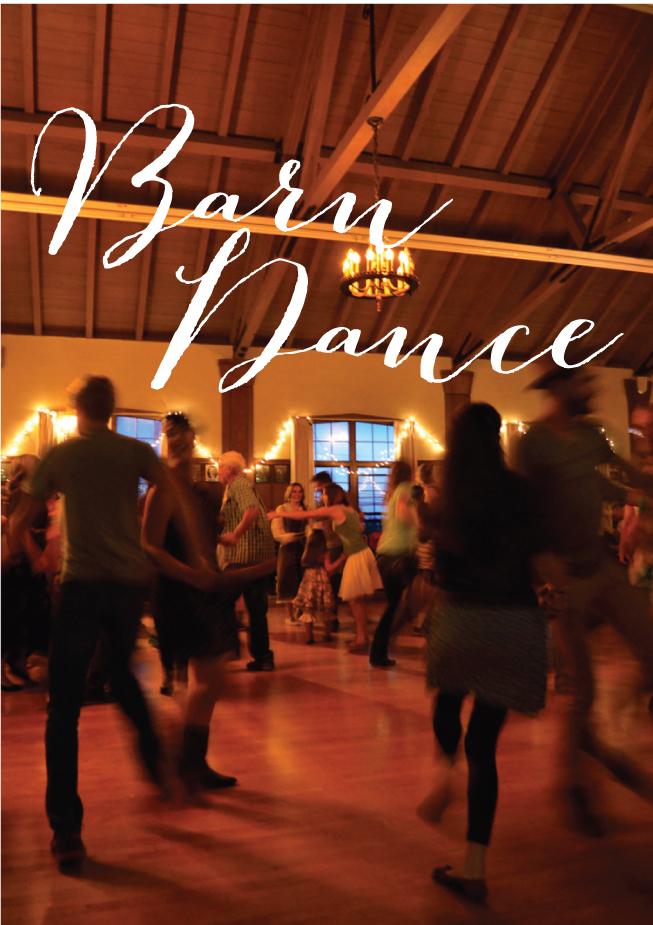 Barn Dance - Fern & Fog