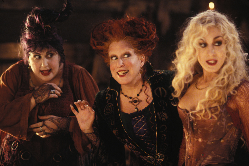 A Day In The Life: Hocus Pocus