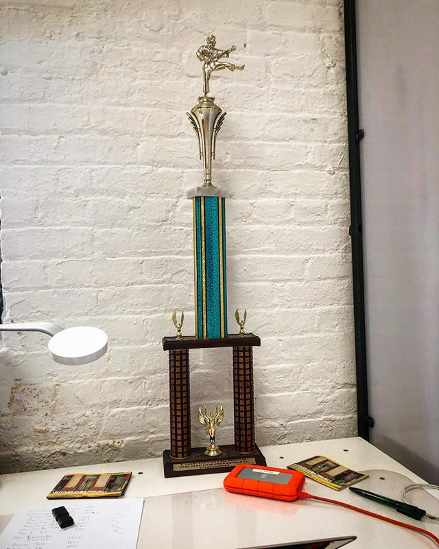 Can you believe someone would throw away this sweet karate trophy???? Their loss I suppose