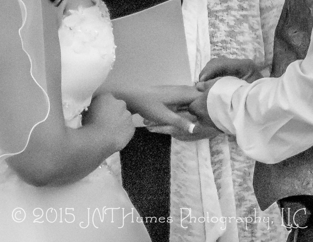 IMG_38482015-09-19© 2015 JNT Humes Photography, LLC.jpg
