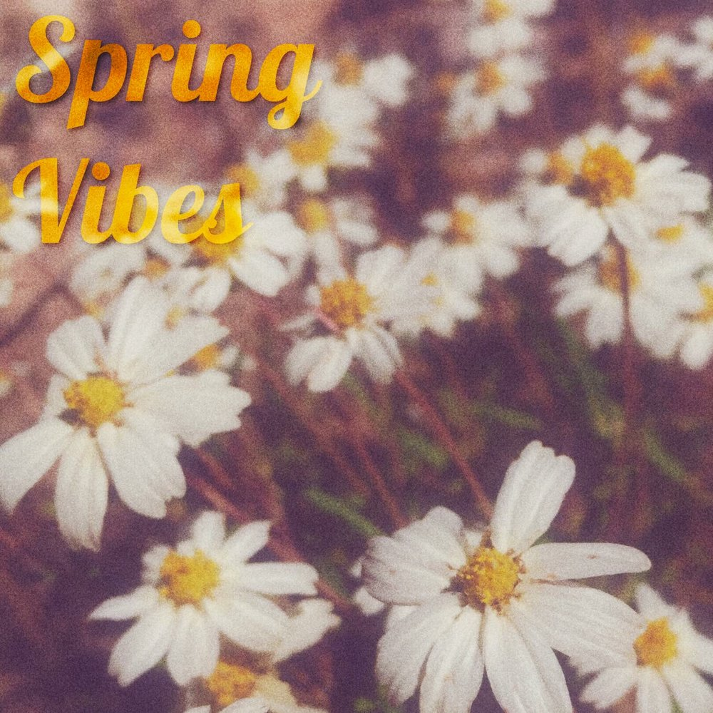 Spring Vibes Playlist