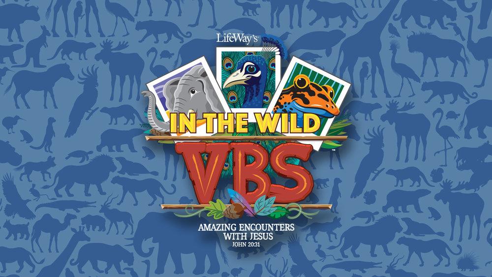 061019_VBS_Logo.jpg
