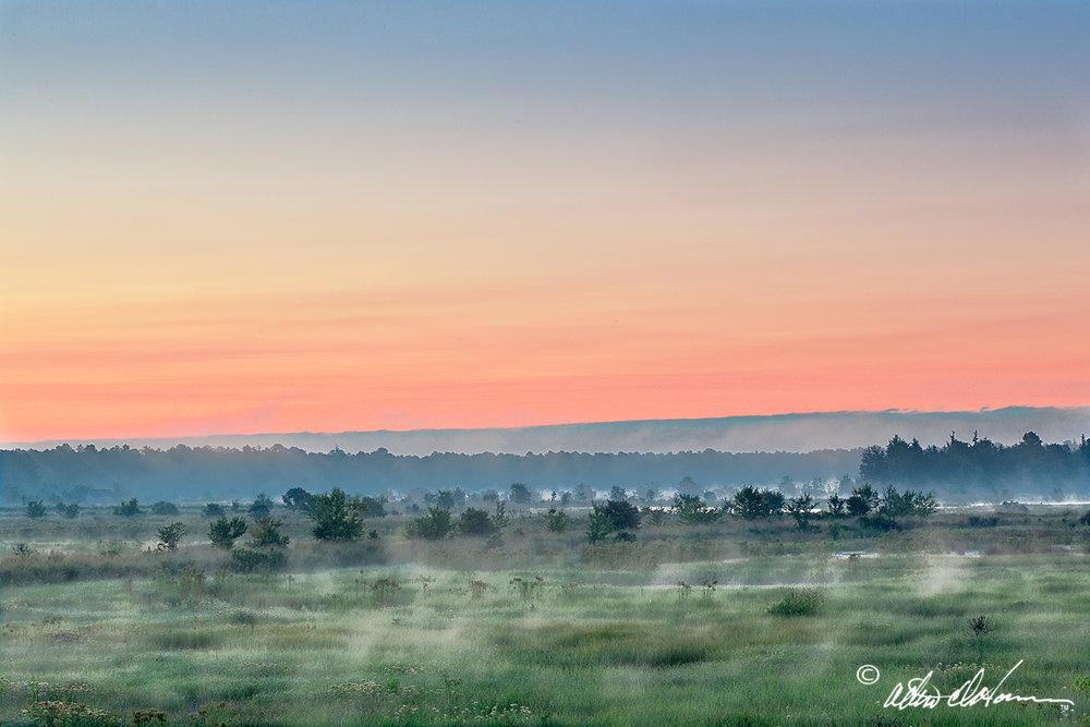 Summer sunrise -events - pinelands imagery.jpg