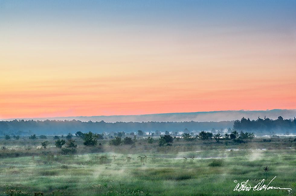 """""""Summer Sunrise""""  - (A,E,F)"""