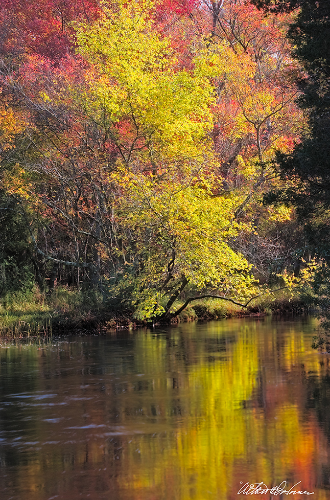 """""""Wading River Reflections""""  - (A,E,F & 20x30 Poster)"""